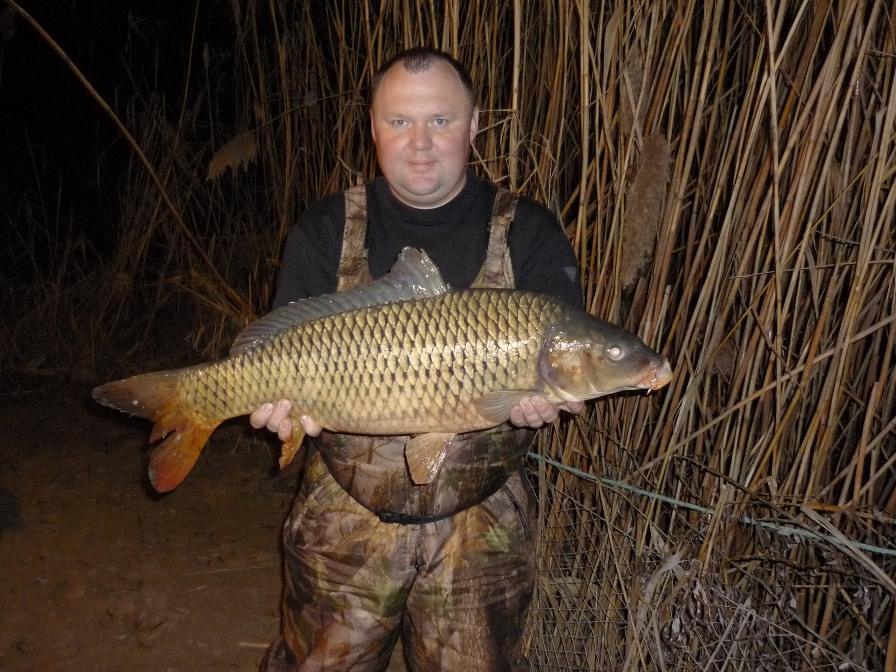 Рыбалка на волге сазан видео